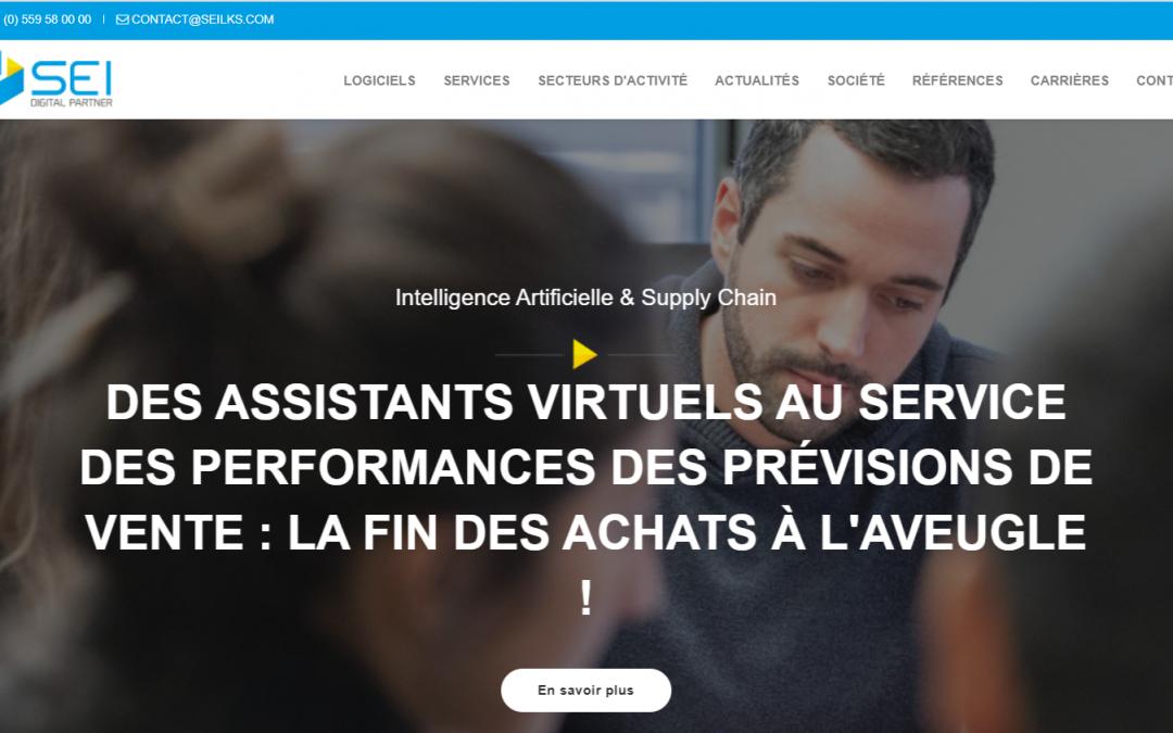 SEI nos presenta su nueva web